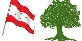 काँग्रेसको ५३ जिल्लाको क्रियाशिल सदस्यता विवाद टुङ्गो लाग्यो