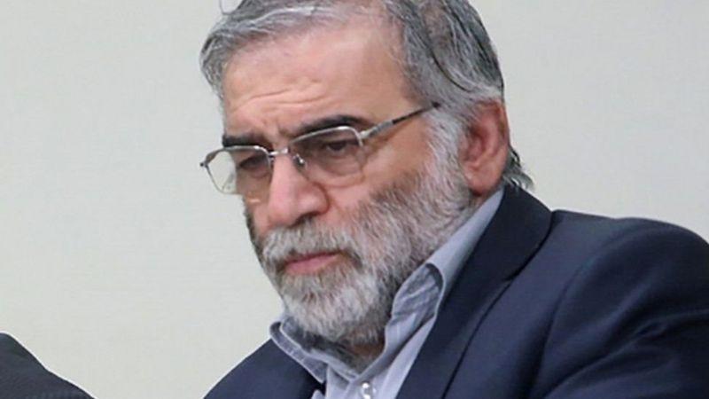 इरानका परमाणु वैज्ञानिकको हत्यामा इजरेली खुफिया निकायको हात रहेको दाबी